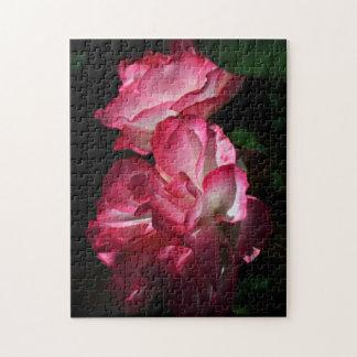 Rosas en el rompecabezas oscuro