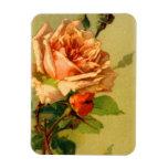 Rosas en imán flexible de la floración