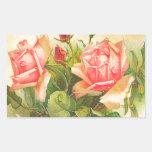 Rosas en la floración pegatina rectangular
