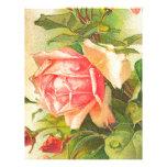 Rosas en la floración plantilla de membrete