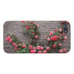 Rosas en la pared de ladrillo iPhone 5 carcasa