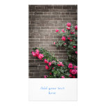 Rosas en la pared de ladrillo tarjetas fotográficas