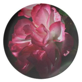 Rosas en la placa oscura plato para fiesta