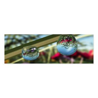 Rosas en señales de las gotas de agua tarjetas de visita mini