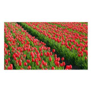 Rosas en tierras de labrantío tarjetas de visita