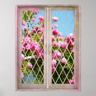 Rosas en ventana poster