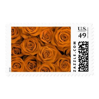Rosas espectaculares anaranjados franqueo