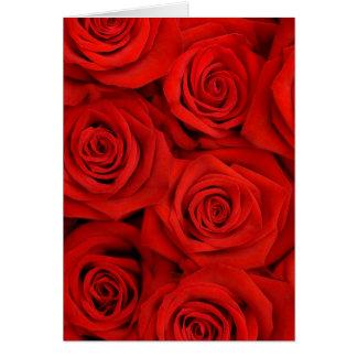 Rosas espectaculares rojos tarjeta de felicitación