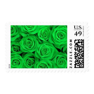 Rosas espectaculares verdes sello