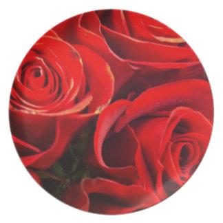 Rosas frescos plato de cena