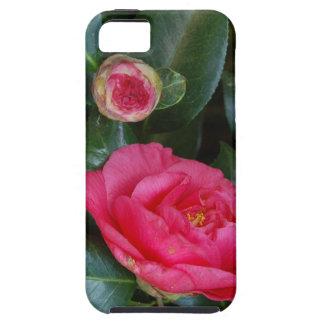 Rosas fuertes Camelias iPhone 5 Carcasas