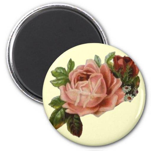Rosas hermosos del vintage imán de frigorifico