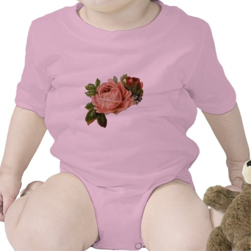 Rosas hermosos del vintage trajes de bebé