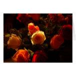 Rosas I - Naranja, rojo y gloria del oro Felicitacion