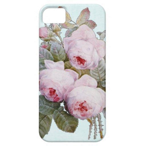 Rosas ingleses del Victorian del vintage en azules iPhone 5 Funda