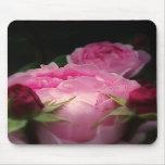 Rosas ingleses en rosa tapete de raton