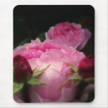 Rosas ingleses en rosa tapetes de raton