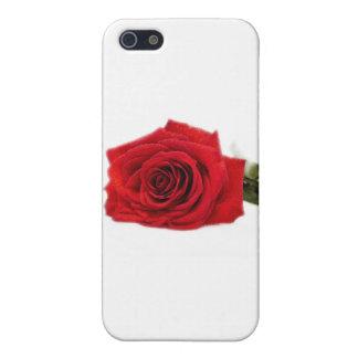 ROSAS iPhone 5 CARCASAS