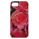 Rosas iPhone 5 Coberturas