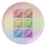 Rosas macros del arco iris plato para fiesta