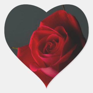 Rosas mágicos pegatina en forma de corazón