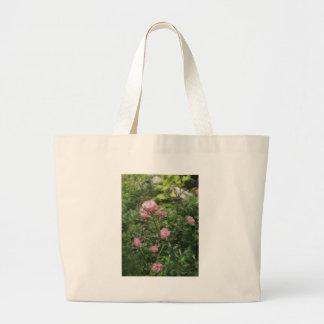 Rosas miniatura rosados 1 bolsa