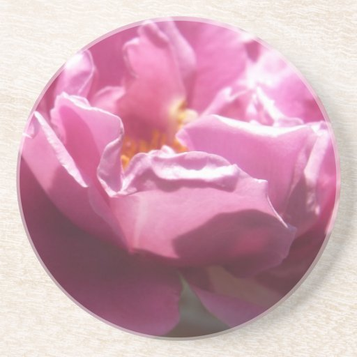 Rosas Moradas 5 Coaster