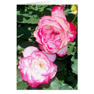 Rosas-Notecard antiguos de Leda Tarjeta De Felicitación