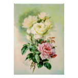 Rosas nupciales franceses del vintage poster