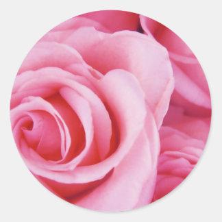 Rosas para usted pegatina redonda