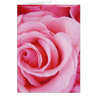 Rosas para usted tarjeta de felicitación