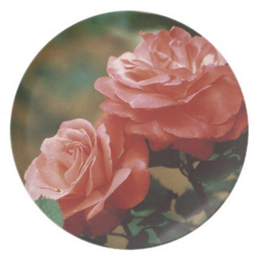Rosas Platos