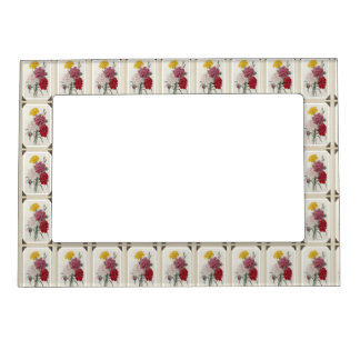 Rosas preciosos marcos magneticos de fotos