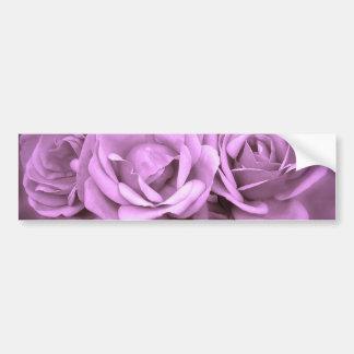 Rosas púrpuras del vintage pegatina de parachoque