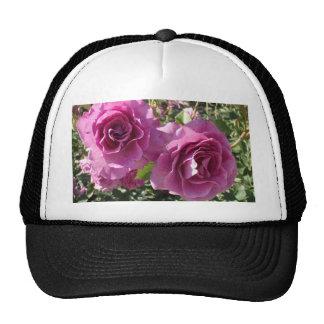 Rosas púrpuras gorro