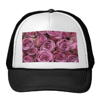 rosas púrpuras pálidos gorros