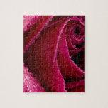 rosas puzzle
