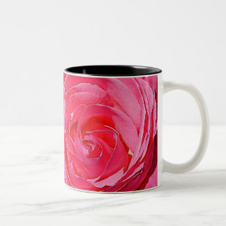 Rosas que suben rosados taza dos tonos