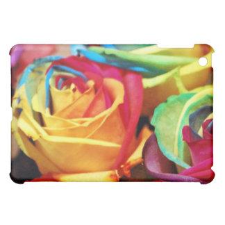 rosas ractive del colourfull