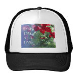 Rosas rojos de un día a la vez gorras