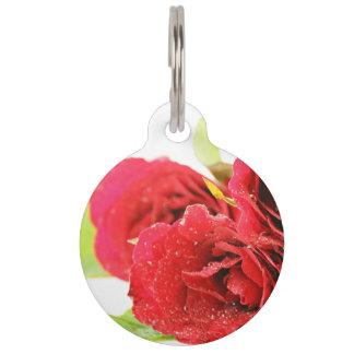 Rosas rojos en una tabla placa de mascota