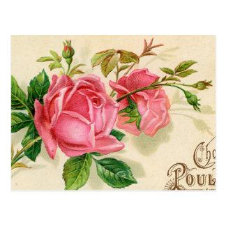 Rosas rojos femeninos de la publicidad francesa de postal