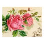 Rosas rojos femeninos de la publicidad francesa de postales