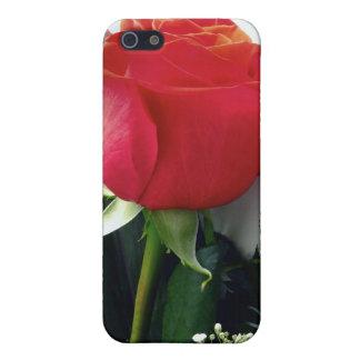 Rosas rojos iPhone 5 funda