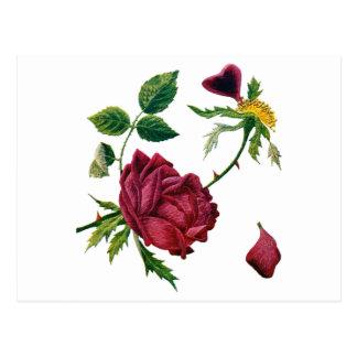Rosas rojos hermosos hechos en bordado de la lana tarjeta postal