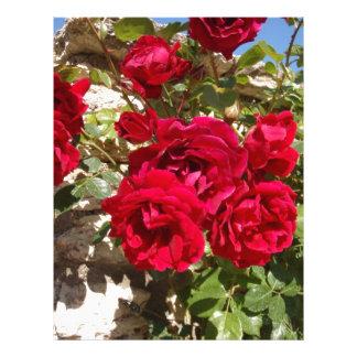 Rosas rojos plantillas de membrete