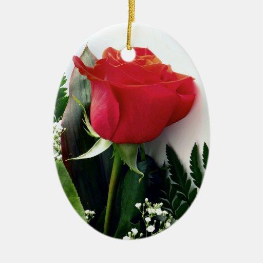 Rosas rojos ornatos