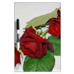 Rosas rojos pizarra blanca