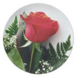 Rosas rojos platos