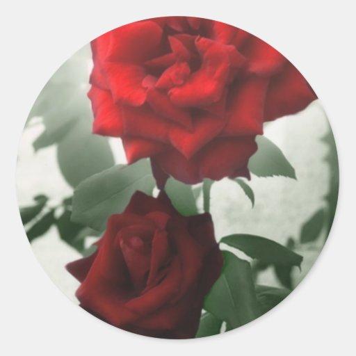 Rosas rojos románticos 1 etiqueta redonda